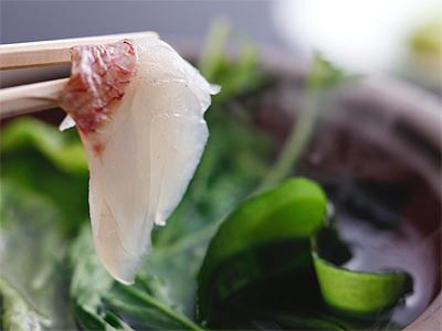 桜鯛しゃぶしゃぶ(料理イメージ)