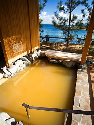 自家源泉の赤湯「古茂江温泉」