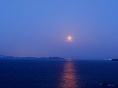 """スペシャルフルムーンデイズ〜海面にキラキラ輝く""""月の道""""〜"""
