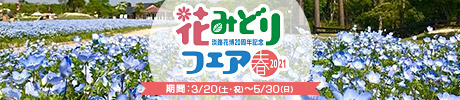 淡路花博20周年記念 花みどりフェア開催